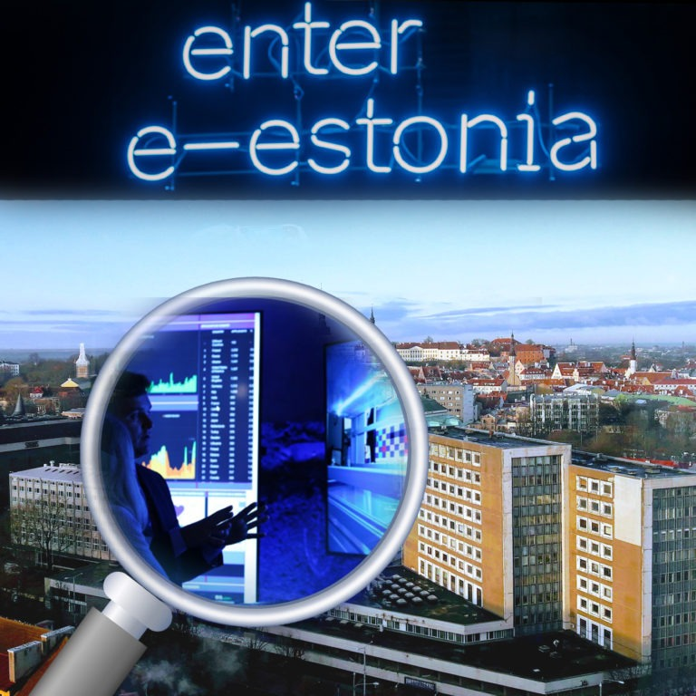 digital estonia view