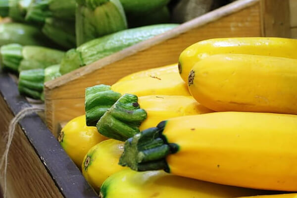 Easy to digest foods for your stomach: Yellow Squash