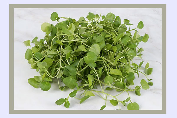 Filling low-calorie foods for weight loss - watercress