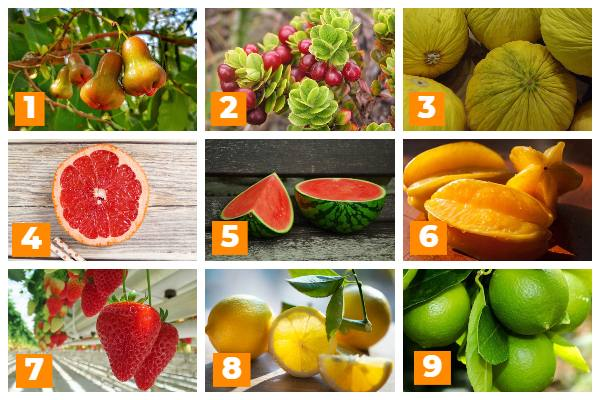 9 high-volume low-calorie fruits that fill you up