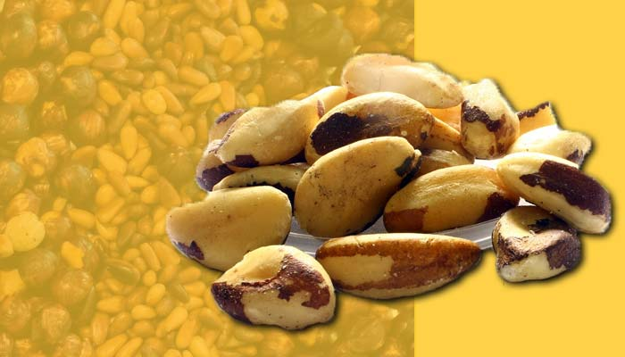 Brazil nuts, a high-calorie snack that is rich in fats.